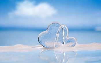ice-hearts-two-hearts-water-forest-valentine's-day